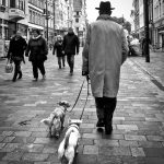 My 2016 in street photography